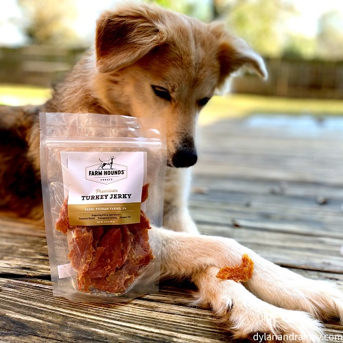 All-Natural Turkey Jerky For Dogs
