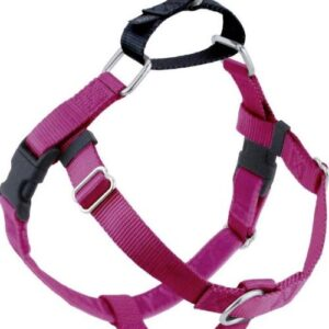 2 Hounds Design raspberry dog harness