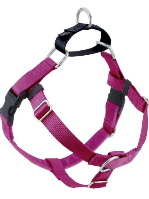 2 Hounds Design Raspberry No Pull Dog Harness