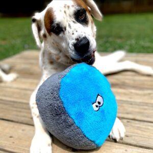 fuzzy ball dog toy