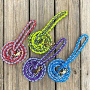 braided paracord dog leash