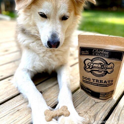 Chicken & Waffles Barley Bones | Dog Treats