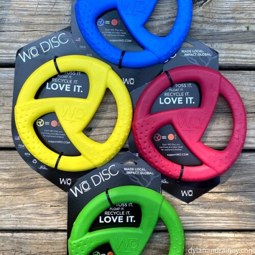 Disc toy for dogs