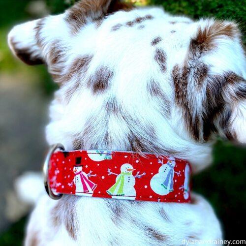 holiday dog martingale collar