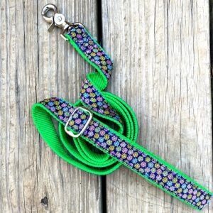 2 Hounds Design Dog Leash