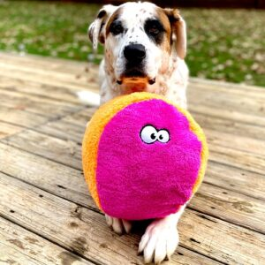 large fuzzy ball for dogs