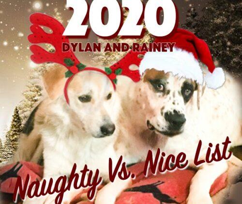 Naughty vs Nice List