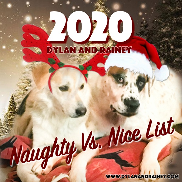 Naughty vs Nice List