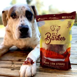 Pork Jerky for Dogs