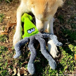 Squid Plush Dog Toy