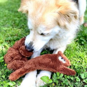 fuzzies squirrel dog toy
