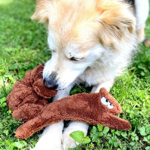 fuzzies squirrel dog toy
