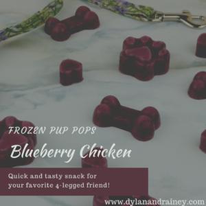 Blueberry Chicken Pup Pop