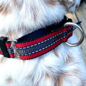 reflective martingale collar