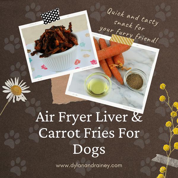Air Fryer Liver Carrot Fries